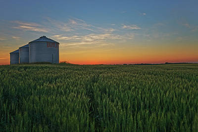 Photograph - Silos At Sunset by Dan Jurak