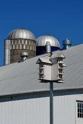Photograph - Silos Birdhouse Barn Roof by Tana Reiff