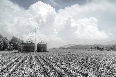 Photograph - Silos In Black And White by Debra and Dave Vanderlaan
