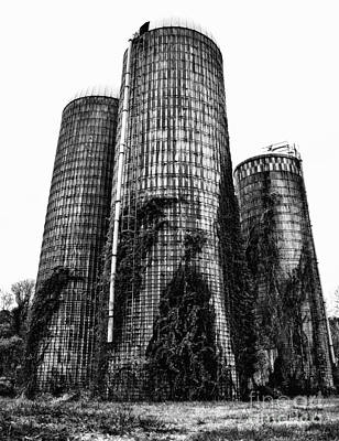 Photograph - Silos by Tamera James