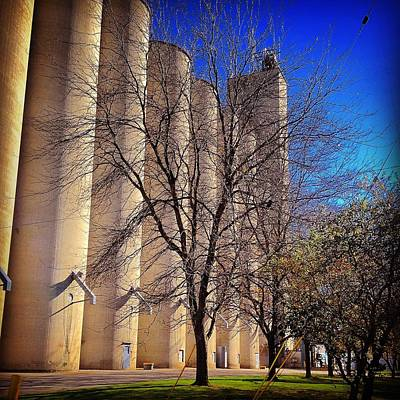 Photograph - Silos Towering From Wright Street by Chris Brown