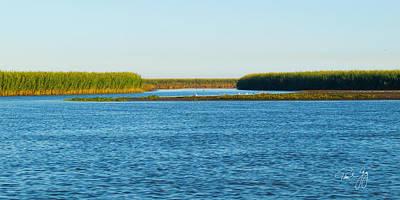 Silt Islands And Banks Mississippi River Delta Louisiana Art Print