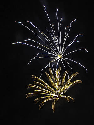 Photograph - Silver And Gold Fireworks by Paula Porterfield-Izzo
