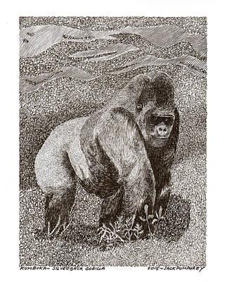 Animals Drawings - Gorilla of my dreams by Jack Pumphrey