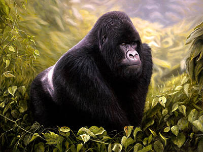 Painting - Silver-back Mountain Gorilla by Jason Morgan