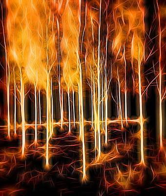 Dunham Massey Digital Art - Silver Birch Dunham Massey Four by Mo Barton