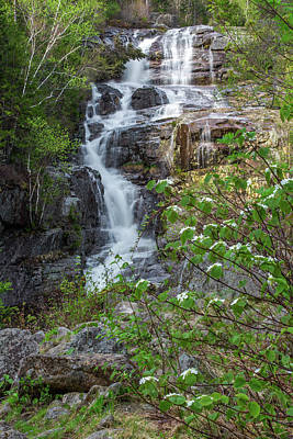 Photograph - Silver Cascade Spring by Chris Whiton