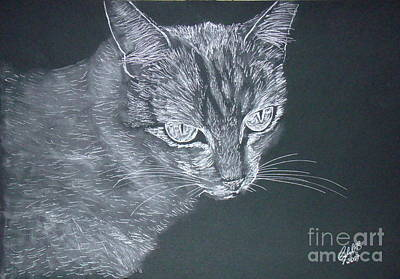 Wall Art - Drawing - Silver Cat by Cybele Chaves