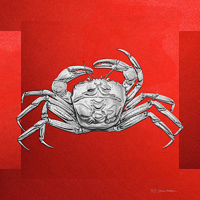 Digital Art - Silver Crab On Red Canvas by Serge Averbukh