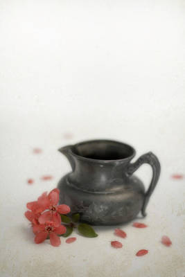 Photograph - Silver Creamer And Crab-apple Blossoms by Eleanor Caputo