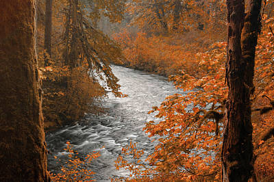 Photograph - Silver Creek by Don Schwartz