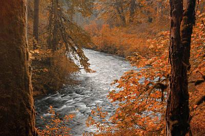 Photograph - Silver Creek by Don Schwartz
