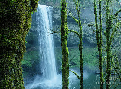 Photograph - Silver Creek Falls ... Oregon by Nick Boren