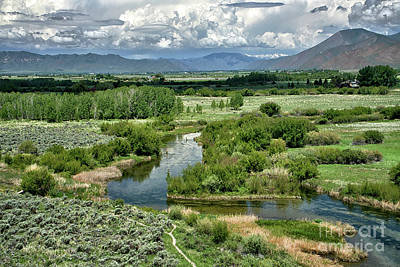 Photograph - Silver Creek Idaho by Roxie Crouch