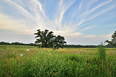 Photograph - Silver Creek Sunset - Mchenry County by Ray Mathis