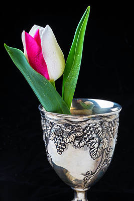 Silver Cup And Tulip Art Print