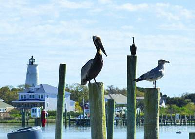 Photograph - Silver Lake Harbor by Jean Wright