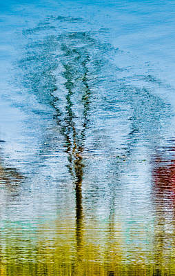 Silver Lake Tree Reflection Art Print