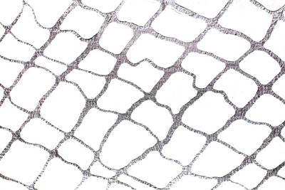 Mixed Media - Silver Net Abstract by Marina Shkolnik