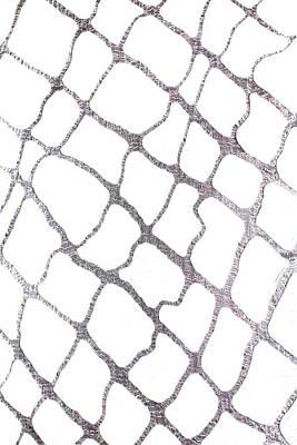Mixed Media - Silver Net by Marina Shkolnik