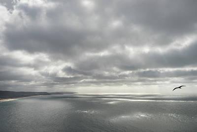 Photograph - Silver Ocean Soar by Georgia Mizuleva