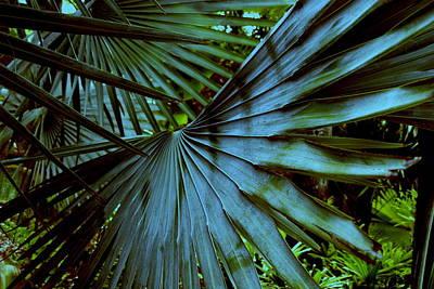 Silver Palm Leaf Art Print by Susanne Van Hulst