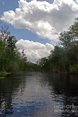 Silver River Photograph - Silver River by Skip Willits