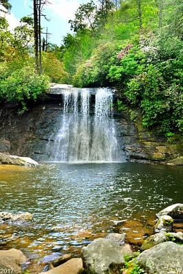 Photograph - Silver Run Falls Vertical by Lisa Wooten