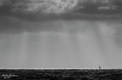 Scallions Photograph - Silver Sailor by Andrew Dickman