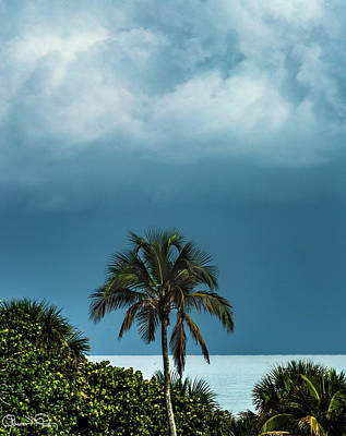 Photograph - Silver Sarasota Sunrise by Susan Molnar