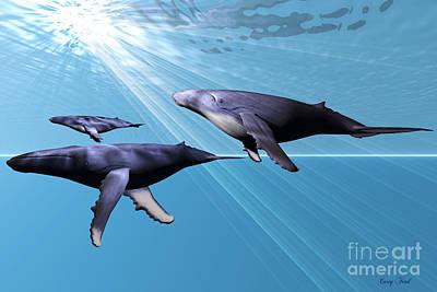 Humpback Whale Digital Art - Silver Sea by Corey Ford