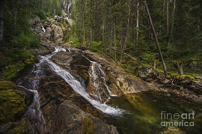 Photograph - Silver Tip Falls by Carrie Cole