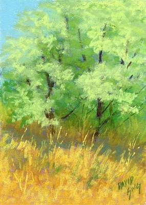Painting - Silver Trees By The Path by David King
