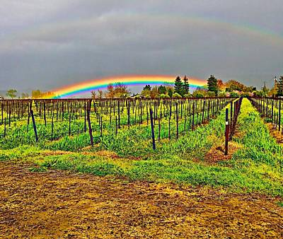 Photograph - Silverado Trail Rainbow In Napa Valley by Cadence Spalding