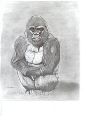 Silverback Gorilla Original by Don  Gallacher