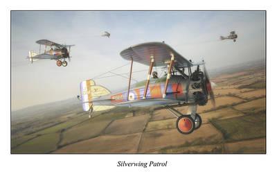 Patrol Digital Art - Silverwing Patrol by Anastasios Polychronis