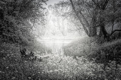 Photograph - Silvery Morning In Black And White by Debra and Dave Vanderlaan