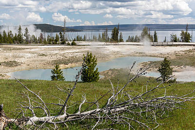 Photograph - Simmering Geysers In Yellowstone National Park by Willie Harper