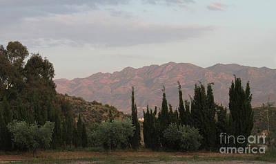 Photograph - Simmering Sierra by Linda Prewer