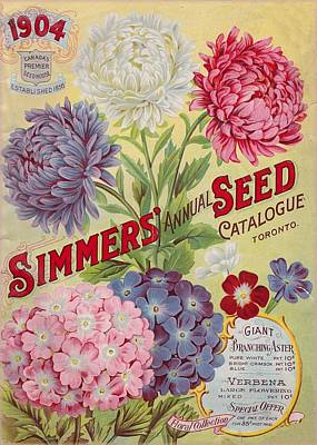 Rights Managed Images Photograph - Simmers Seeds by David and Lynn Keller