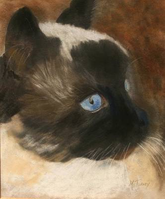 Pastel - Simon by Michele Turney