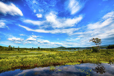 New York Photograph - Simon Pond by David Patterson