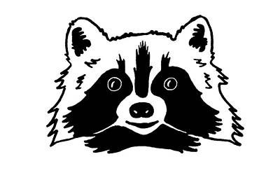 Drawing - Simple Funny Raccoon by Masha Batkova