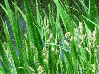Photograph - Simple Green Grass by Sybil Staples