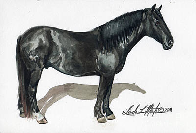 Mustang A Day Challenge Painting - Simple Horse Portrait by Linda L Martin