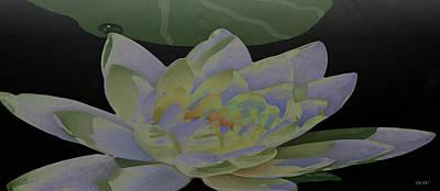 Simple Lily Art Print by Debra     Vatalaro
