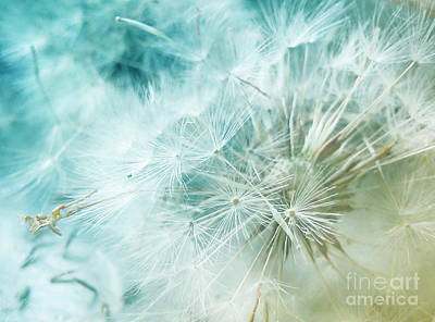 Photograph - Simple Pleasures 1 by Janie Johnson