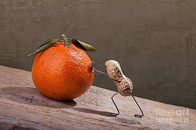 Comical Photograph - Simple Things - Sisyphos 01 by Nailia Schwarz