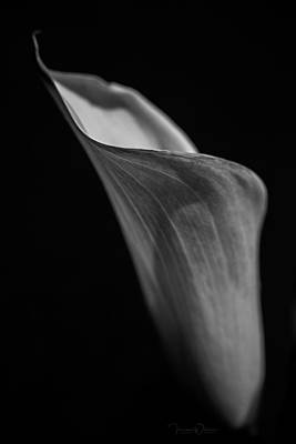 Photograph - Simplicity In Black And White by Teresa Wilson