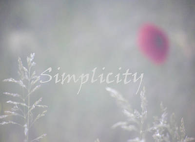 Simplicity Misty Poppy Art Print